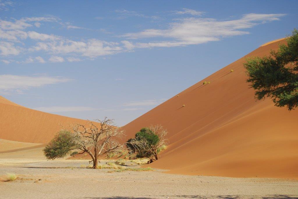 Die höchsten Dünen entdecken Sie in Namibia. Hier die Sossusflei.
