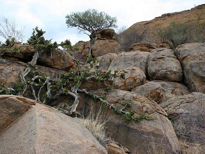 Steinformationen im Erongo Gebirge Namibia